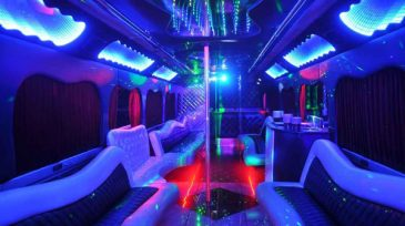 18 person party bus rental Maitland
