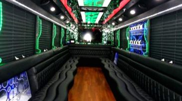 20 passenger party bus 1 Maitland